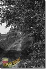 1ère marche du muguet-IMG_4360-04052014 (Copier)
