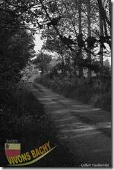 1ère marche du muguet-IMG_4363-04052014 (Copier)