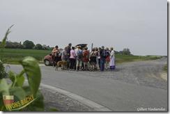 1ère marche du muguet-IMG_4353-04052014 (Copier)