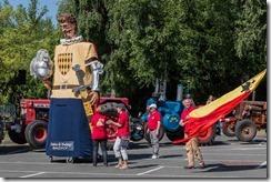 Défilé Sainghin en Mélantois - 253A6243 - 10 juin 2017